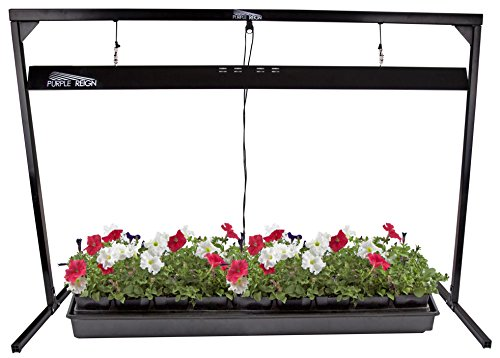 Apollo Horticulture Purple Reign 4' Foot 2 Bulb 54W 6400K Jump Start T5 Grow Light System for Plant Growing