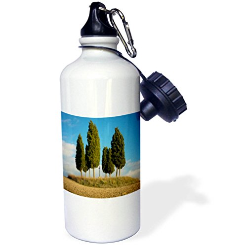3dRose Danita Delimont - Italy - Tree circle surrounds a memorial, San Quirico dOrcia, Tuscany, Italy - 21 oz Sports Water Bottle (wb_277548_1) by 3dRose