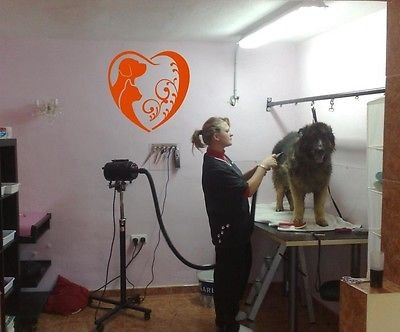 Wall Vinyl Decal Dog Cat Grooming Salon Pet Shop Store Housewares Mural (Cat Grooming Pictures)