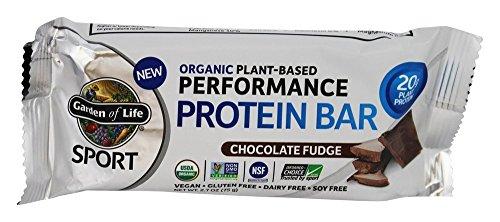 Garden Of Life, Bar Protein Chocolate Fudge Organic, 2.7 Ounce ()