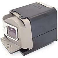 Viewsonic PJD6531W Projector Lamp