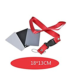 CEARI White Balance 18% Grey Calibrated Card Set for Digital and Film Exposure Photography with Premium Lanyard