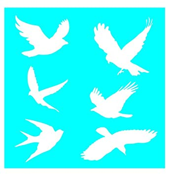 1e3b5d5f03d3d3 Amazon.com: Auto Vynamics - STENCIL-BIRDSET01-10 - Detailed Flying &  Perched Birds Stencil Set - Featuring Doves, Sparrows, Finches, Hawks, &  More!