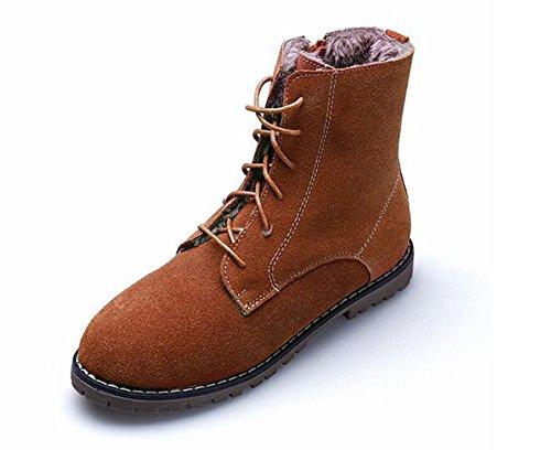 puri scarpe colore Martin Donna pizzo di in Stivali 35 piatti basso doposci stivali APRICOT NSXZ tacco 43 stivali pizzo 1vBv6x