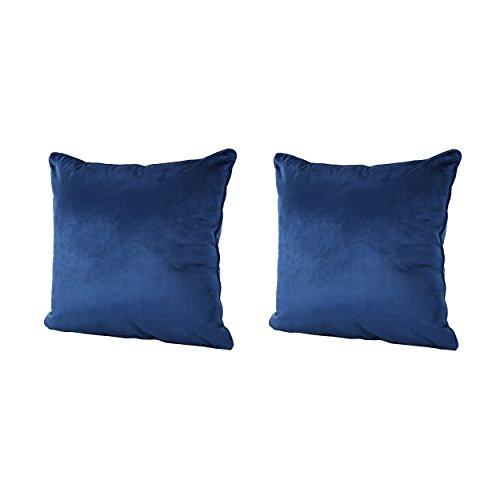 (Christopher Knight Home 301585 Velvin New Velvet Throw Pillow (Set of 2) (Navy Blue),)