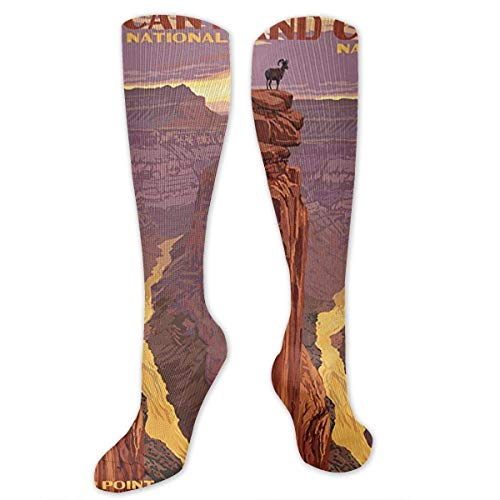 """Grand Canyon National Park - Toroweap Point Compression Sock for Women & Men - Best for Running, Athletic Sports, Flight Travel 19.68"""""""