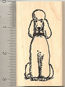 Standard Poodle Dog Rubber Stamp - Wood Mounted