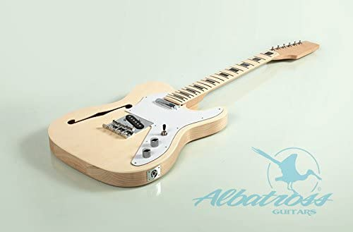 Albatross Guitars GK007.1 Semi Hollow Body Electric Guitar: Amazon.co.uk:  Musical InstrumentsAmazon UK