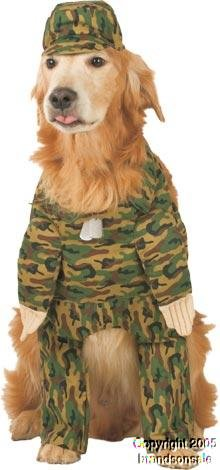 Rambark Army Dog (Large)