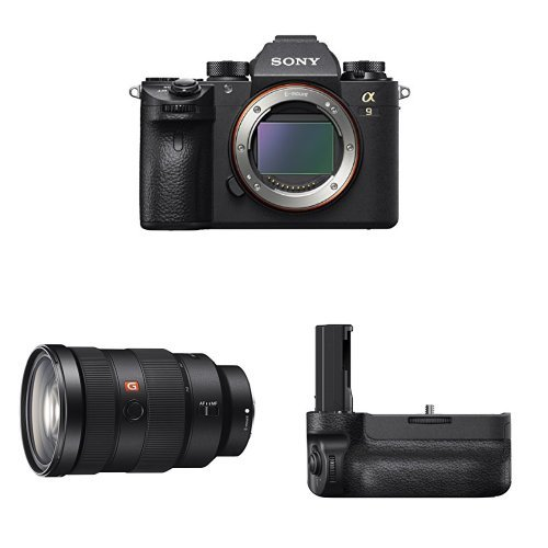 Top Sony Mirrorless Cameras