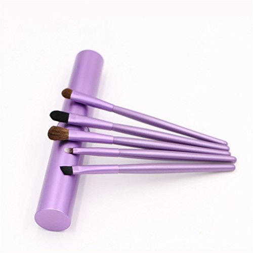 5Color 5Pcs Professional Synthetic Hair Eyeshadow Brushes Se