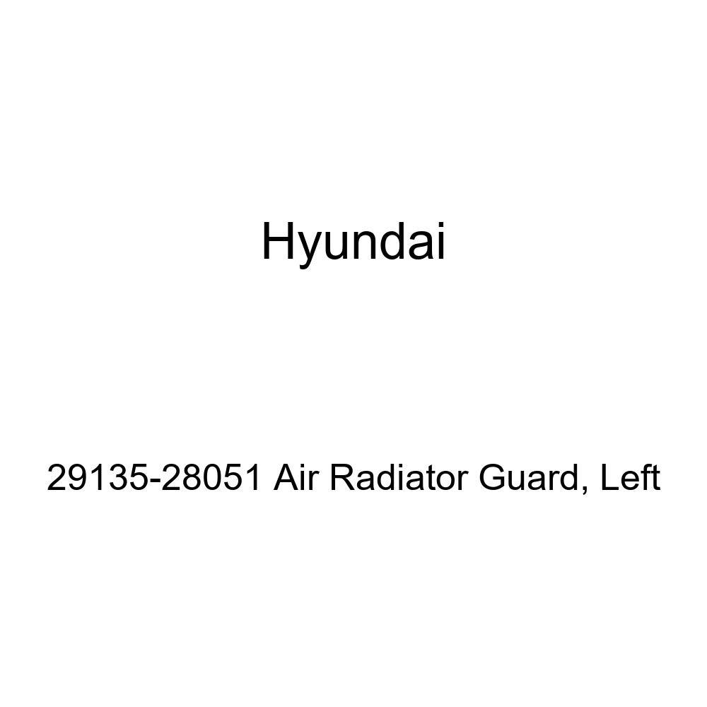 HYUNDAI Genuine 29135-28051 Air Radiator Guard Left