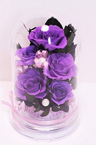 選べる8color ドームケース入りアレンジ プリザーブドフラワー (紫 purple パープル) B07BQDCK1W 紫 purple パープル 紫 purple パープル