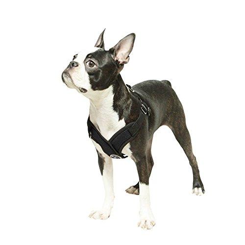xl comfort dog harness - 4