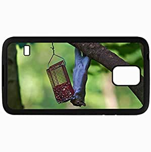 Fashion Unique Design Protective Cellphone Back Cover Case For Samsung GalaxyS5 Case Squirrel Eating Climbing Tree Trough Black