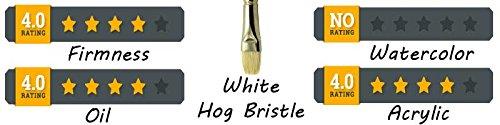 ZEM Brush White Bristle Stiff Fan Brush Set Size 2,4,6,8