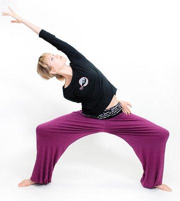 03bec22d60367 mantra yoga pants -strtech-soft viscose- mantra- unisex (plum/black ...