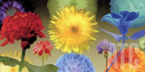 ArtToCanvas 48W x 24H inches : Sunflower Fireworks by Robert Mertens - Canvas - Sunflowers 24h