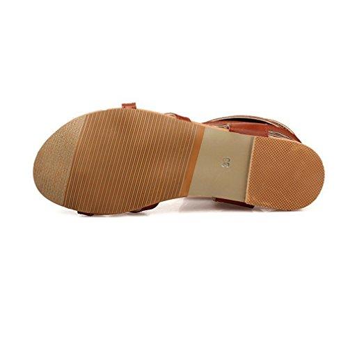 al tinta donna scarpe alti sandali unita gladiatore Fluores sexy grandi ginocchio piatti Sandali Marrone sandali scarpe donna stivali estive qtwEfE47