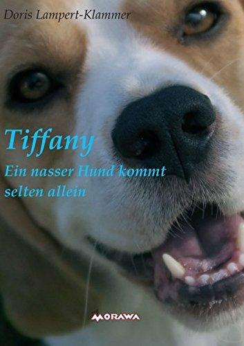 Tiffany, ein nasser Hund kommt selten allein