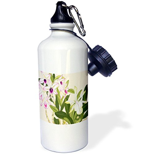 3dRose wb_175432_1 'Pink Laelia Orchids and Pale Yellow Dendrobium Orchids' Sports Water Bottle, 21 oz, White