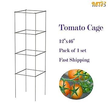 Amazon.com : MTB Galvanized Square Folding Tomato Cage Plant Support ...