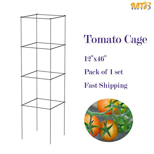 MTB Galvanized Square Folding Tomato Cage Plant Support Tower 12 inch by 46 inch, Pack of 1 (Cheap Tomato Cages)