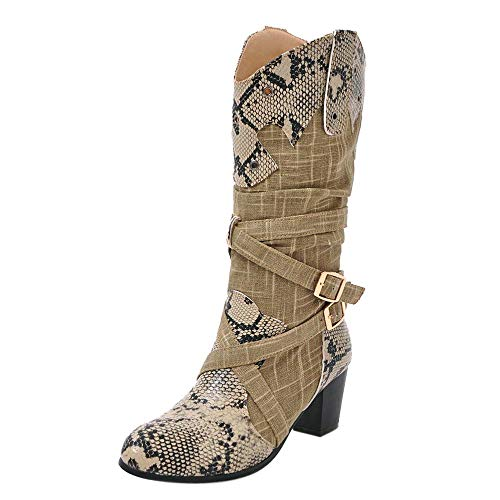 Dacawin Fashion Women Winter Boots Colorblock Sexy Snakeskin High Heels Mid Tube Boots