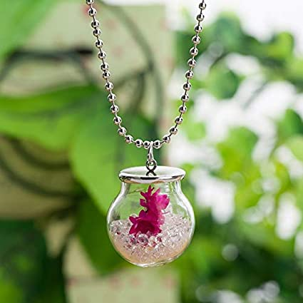 Amazon Com Maga 1 10pcs Lot Glass Terrarium Necklace Dried Flowers