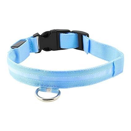 Amazon.com : eDealMax Ajustable llevó el Collar de perro de ...