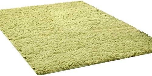 Kikon 洗える ラグマット カーペット オールシーズン シャギーラグ 絨毯 滑り止め付 冬用 夏用 防ダニ 抗菌 防臭 床暖房対応 (グリーン1 40×40cm)
