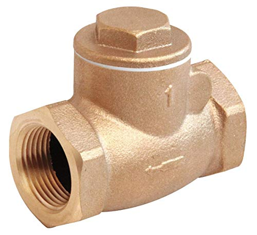 (Swing Check Valve, Bronze, 1/4 In.,)