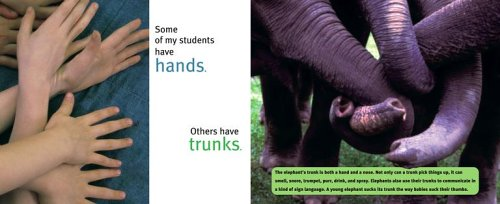 Elephants Can Paint Too! (Anne Schwartz Books)