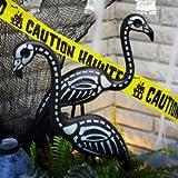 Skeleton Flamingo, Health Care Stuffs