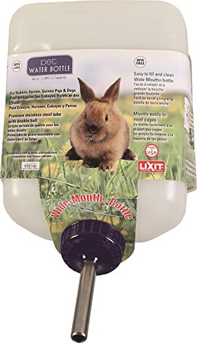 Rabbit Waterer (Lixit Corporation SLX0670 All Weather Rabbit Water Bottle, 64-Ounce)