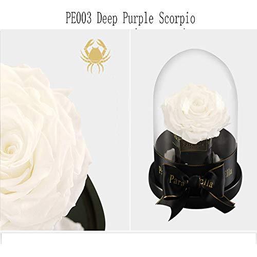 pe003 Pe003 Beige Virgo San Cancro Di Bianco Costellazione Compleanno Valentino Gengyouyuan Rose Regalo xUvzwZU0H