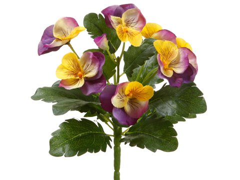 8″ Pansy Bush Lavender Yellow (Pack of 12)