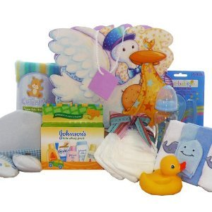Stork Gift Delivery (Look What The Stork Brought! Baby Gift Bag, Blue Boys)