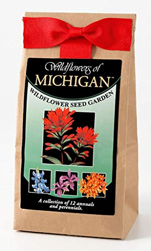 Michigan Wildflower Seed Mix - A Beautiful Collection of Twelve Annuals & Perennials - Enjoy The Natural Beauty of Michigan Flowers in Your Own Home Garden