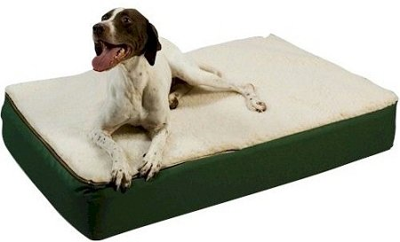 Snoozer Super Orthopedic Lounge Pet Bed, X-Large, Navy with Creme Sherpa, My Pet Supplies