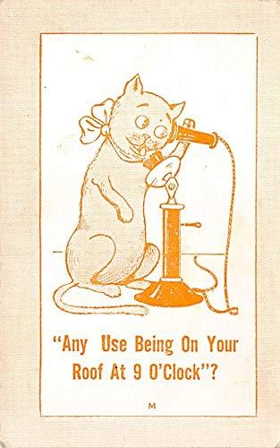 Misc Animals Cat on Phone Unused