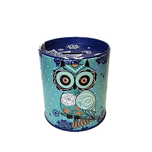 Owl Piggy Bank Tin Save Spend Share Giving Coin Money Can Keepsake Home Bedroom Nursery Party Decor Ornament Pen Pencil Brushes Holder Stationery Dresser Organizer Cup Kids Boys Girls Adults (Pink)