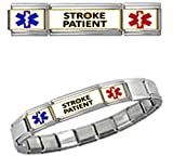 Stylysh Charms STROKE PATIENT MEDICAL ALERT ID 9mm + Italian Charm SILVER TONE MATTE BRUSHED Starter Bracelet