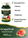 Carlyle Grapefruit Seed Extract 500 mg 120 Capsules – Maximum Strength – Non-GMO, Gluten Free