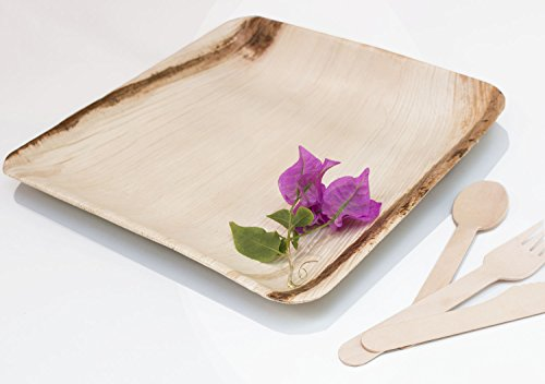 Natural Disposable Palm Leaf Plates - 30 Pack 10 inch - Perfect eco plates for dinner parties- Eco-friendly Elegant Wooden Dinnerware for Weddings