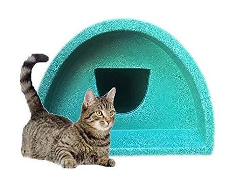 Spring Venta - Cat House/Cat Caseta de exterior (redondo), color verde £ 36.99: Amazon.es: Productos para mascotas