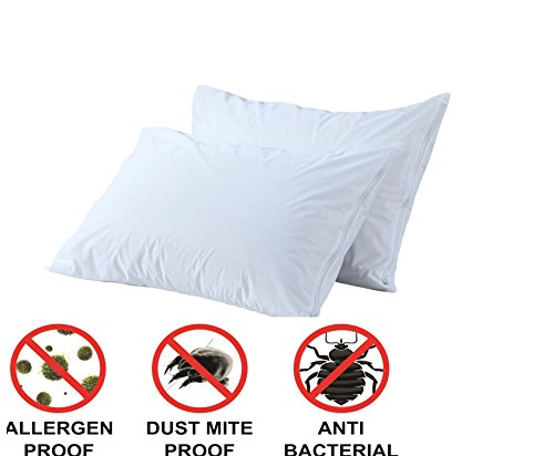 Anti Allergy Bed Bug Dust Mite Decorative Pillows Inserts Covers