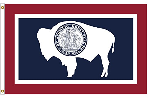 (Wyoming 4ftx6ft Nylon State Flag 4x6 Made in USA 4'x6')