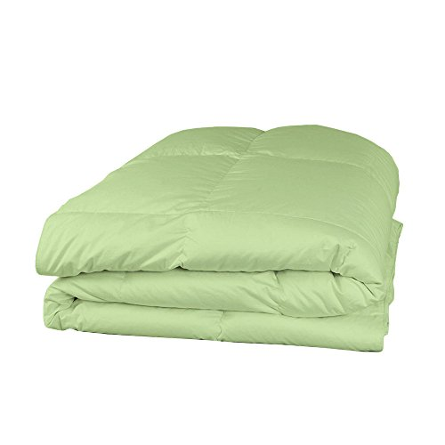 Relaxare Twin 400TC 100% Egyptian Cotton Sage Solid 1PCs Comforter Solid- Ultra Soft Breathable Premium Fabric