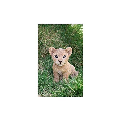 (Pet Pals - Lion Cub Sitting)